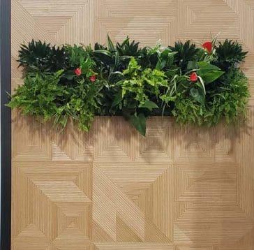 murs vegetaux modulaires avec couronne décor