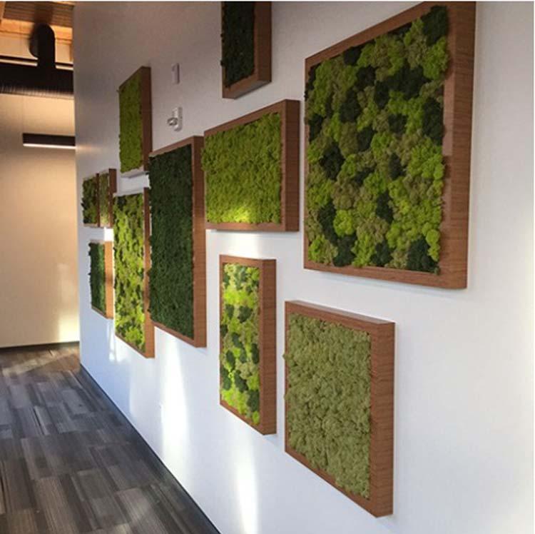 idee deco murs vegetaux interieurs