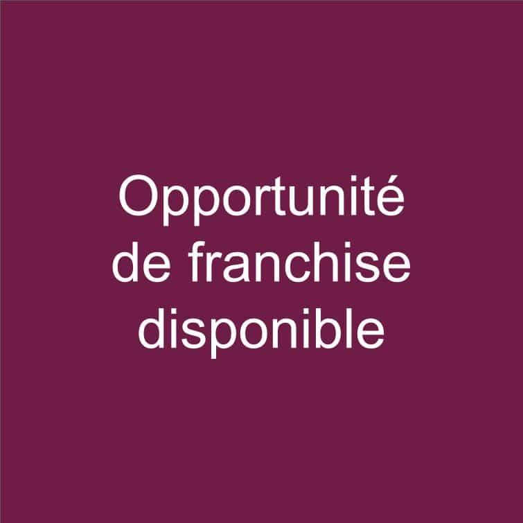 service opportunite de franchise disponible