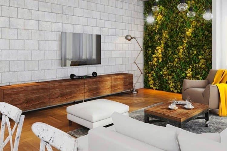 mur végétal salon